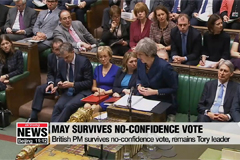 British PM May survives no-confidence vote, remains Tory leader