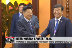 Two Koreas to field unified teams to 2020 Tokyo Olympics