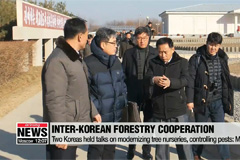 Two Koreas discussed joint efforts to modernize tree nurseries, control pests: Ministry