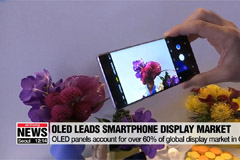 OLED takes more than 60% of global smartphone display market in Q3