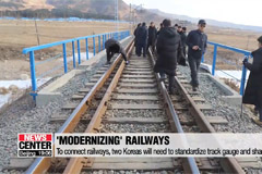 Researchers of two Koreas agree on need for additional, detailed rail surveys