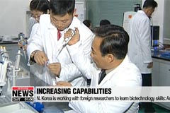 Military analysts concerned about N. Korea's biological weapons: NYT