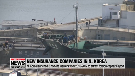 N. Korea launched 3 non-life insurance firms to attract foreign capital: report