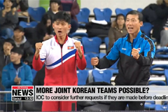 Long journey ahead for the two Koreas' joint teams aiming for Tokyo 2020