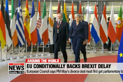 EU conditionally backs Brexit delay