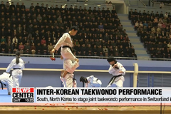 Two Koreas to showcase Taekwon