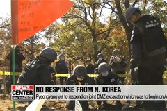 No response from N. Korea on joint excavation at DMZ, holding military talks