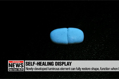 Korean researchers develop self-healing display material