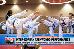 Two Koreas perform joint taekwondo demonstration in Switzerland