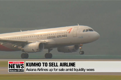 Asiana Airlines up for sale amid liquidity woes