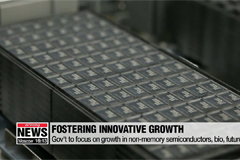 Gov't to foster growth of non-