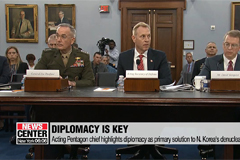 Acting Pentagon chief highlights diplomacy as primary solution to N. Korea's denuclearization