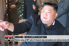 Member states of NPT call on N. Korea to stop provocations and continue denuke talks: RFA