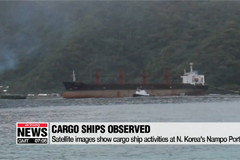 Satellite images show cargo ship activities at N. Korea's Nampo Port: Report