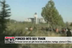 N. Korean women and girls forced into prostitution, marriage, cybersex in China: Report