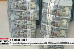 S. Korea's foreign exchange reserves edge down in May