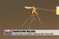 S. Korea plans to eradicate malaria by 2021: Official