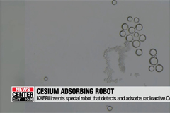 KAERI invents special robot that detects and adsorbs radioactive Cesium