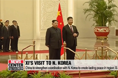 Xi Jinping pledges to support