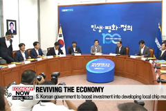 S. Korean government to boost investment into developing local chip materials