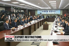 Japan considers strengthening export restriction as Korean government prepares to file complaints to WTO