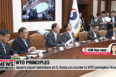 S. Korea's finance chief urges Japan to scrap export tech-related curbs, pledges help to firms