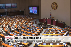National Assembly's Q&A session focused on economic issues on Wednesday