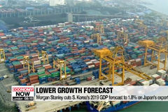 Morgan Stanley cuts S. Korea's 2019 GDP forecast to 1.8% on Japan's export curbs