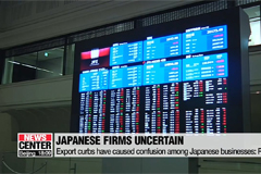 Export curbs have caused confusion among Japanese businesses: Report
