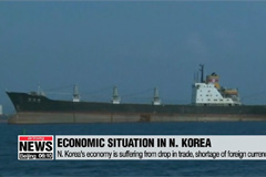 Japan didn't take action against entry of ships suspected of carrying N. Korean coal: NIS