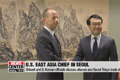 U.S. will do what it can to help resolve Seoul-Tokyo trade dispute: U.S. East Asia chief