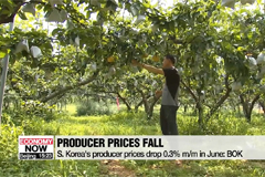 S. Korea's producer prices drop 0.3 pct. m/m in June: BOK
