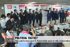 Experts say Sunday's upper house results will not have significant toll on Seoul-Tokyo ties