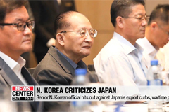 Senior N. Korean official hits out against Japan's export curbs, wartime crimes