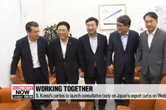 S. Korea's rival parties to launch consultative body this week to deal with Japan's export curbs