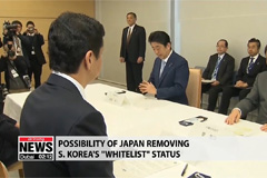 'White list' decision: Forecast and implications by Jonathan Miller at Japan Inst. of Int'l Affairs