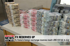 S. Korea's foreign exchange reserves reach US$ 403 bil. in July