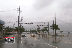 Typhoon Francisco weakens to tropical depression as it makes land near Busan