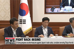S. Korea prepares countermeasures against Japan's trade curbs, perhaps removing Tokyo from its 'whitelist'