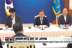 President Moon discusses countermeasures against Japan with economic experts