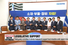 Ruling party committee to devise measures to support local industries amid Japan's trade curbs