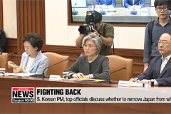 S. Korea discusses whether to remove Japan from whitelist, results not released on Thursday