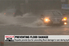 Experts provide tips for preventing flood damage to cars during typhoons