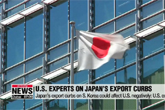 """Abe's export curbs on S. Korea based on politics and will hurt U.S."": U.S. experts"
