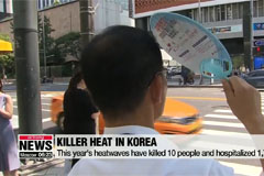 10 people die, about 1,700 suffer illnesses from heatwaves this year