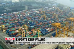 S. Korea's exports fall 13 % y/y in first 20 days of August
