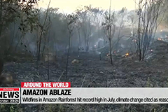 Wildfires in Amazon Rainforest hit record high in July