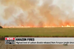 Massive wildfires in Amazon rainforest emerging as 'global crisis'
