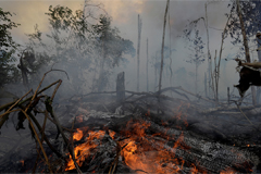 Brazil slams Macron for being 'insulting', rejects US$ 20 mil. emergency aid in fight Amazon fires