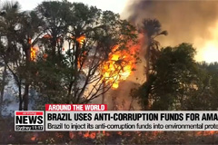 Brazil to inject its anti-corruption funds into environmental protection